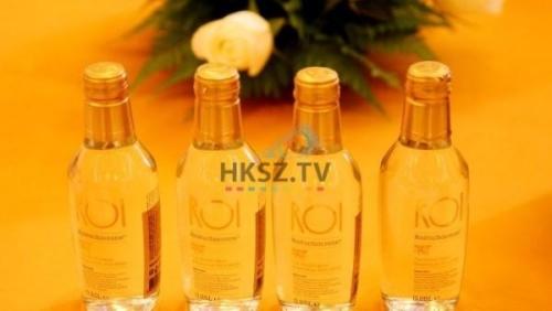 HKSZTV ARAB BUSINESS CLUB (495)
